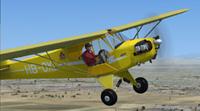 Screenshot of Piper J-3 Cub HB-OXL in flight.