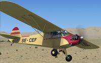 Screenshot of Piper J-3 Cub SC-CEF in flight.