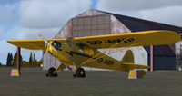 Screenshot of Piper J-3 Cub SP-AWP on the ground.