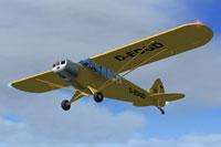 Screenshot of Piper L-18C Super Cub D-EDGD in flight.