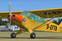Screenshot of Piper Super Cub D-EFTB on the ground.