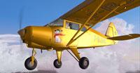 Screenshot of Piper Tri Pacer PA20 F-BJAC in flight.