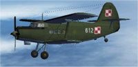 Screenshot of Polish Green An2T in flight.