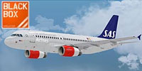 Screenshot of Scandinavian Airlines Airbus A319 in flight.
