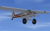 Screenshot of Super Cub Extreme2 N06010 in flight.