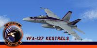 Screenshot of US Navy F/A-18E Super Hornet in flight.