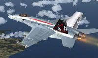 Screenshot of Super Hornet with corrected textures.