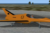 Screenshot of Swamp Wallaby 'Gold Edition' on runway.