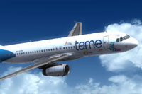 Screenshot of Tame Airbus A320 in flight.