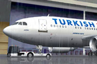Screenshot of Turkish Airlines Jetliner on the ground.