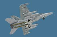 Screenshot of US Navy EA-18G VAQ-136 in flight.