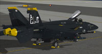 "Screenshot of ""Jolly Rogers"" US Navy FA-18E CAG on the ground."