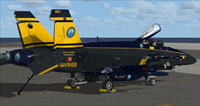 Screenshot of US Navy FA-18E MSC Diego Garcia CAG parked on carrier.
