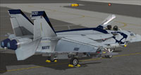 Screenshot of US Navy FA-18E VAQ-139 CAG on the ground.