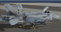 Screenshot of US Navy FA-18E VAQ-139 CO on the ground.