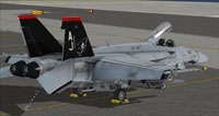 Screenshot of US Navy FA-18E VF-101 parked on carrier.