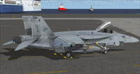 Screenshot of US Navy FA-18E VFA-113 parked on carrier.