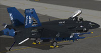 Screenshot of US Navy FA-18E VFA-143 CAG on the ground.