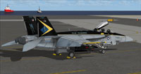 Screenshot of US Navy FA-18E VFA-146 CAG parked on carrier.