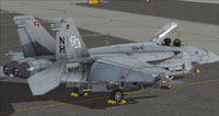 Screenshot of US Navy FA-18E VFA-41 on the ground.