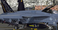 Screenshot of US Navy FA-18E VMA-513 CAG on the ground.