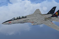 Screenshot of US Navy Grumman F-14 Tomcat in flight.