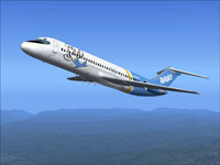 Screenshot of Valujet Douglas DC-9-30 in flight.