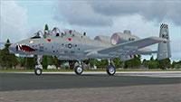 A10 Warthog on runway.