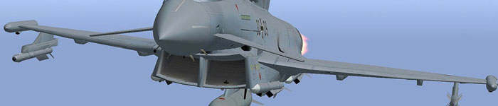 AFS Typhoon 4 for FSX/FS2004