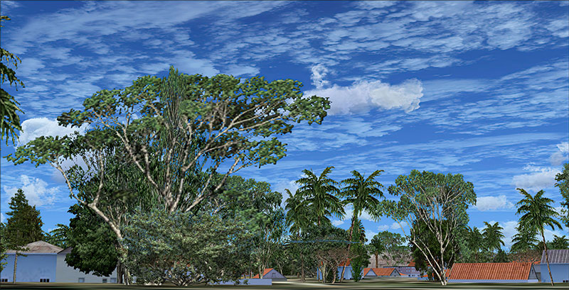 Enhanced trees in FSX