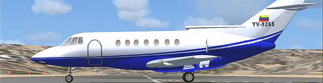 Alejandro Lucena's Hawker Raytheon in blue colors.