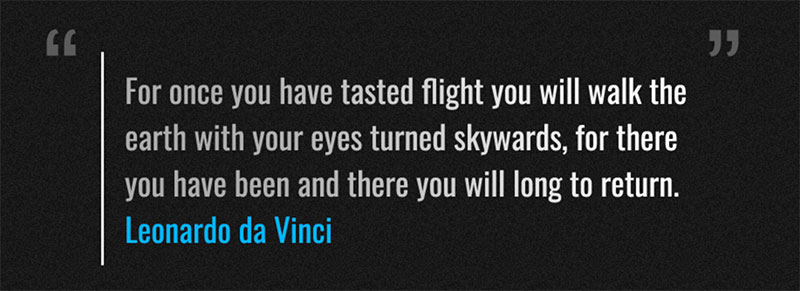 Leonardo da Vinci quote published on the official website.