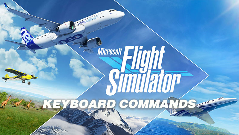 MSFS Keyboard controls and commands cover artwork.
