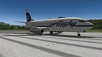 Skunk 737 Project