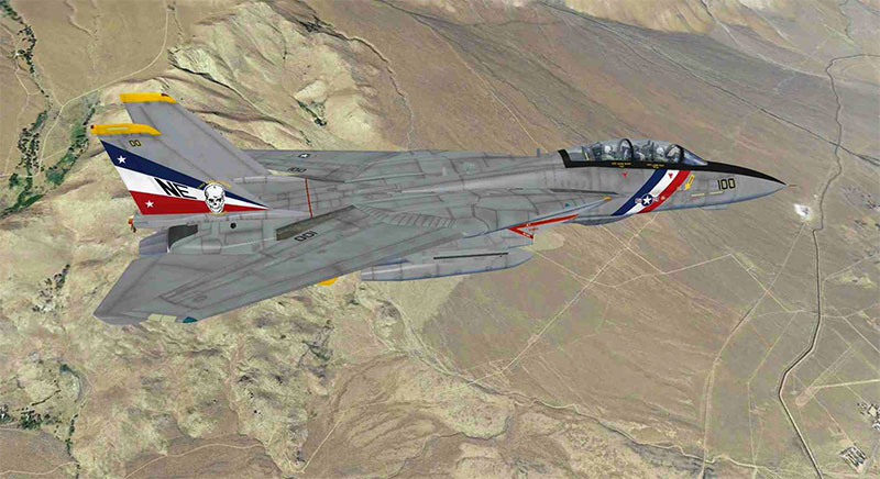 Tomcat in FSX: Steam Edition.