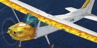 Cessna 172T in flight.