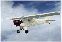 J3 Cub Prop in flight.