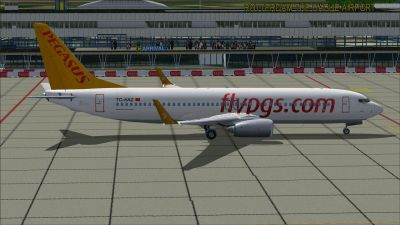Pegasus Airlines Boeing 737-800 at airport.