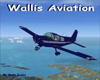 Wallis Aviation Baby Grumman AA-5B in flight.
