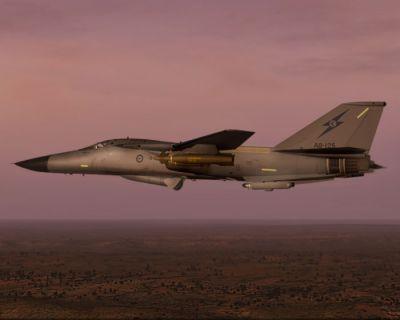 Pig HUD Project F-111 in flight.