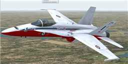 F/A-18C Snowbird in flight.