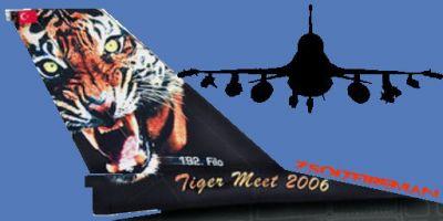 TUAF F-16D Tail Decal.