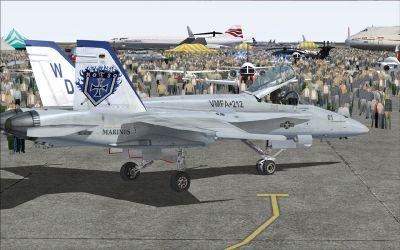 US Marines F/A-18C Lancers.
