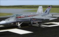 US Marines F/A-18C Silver Eagles CAG on runway.