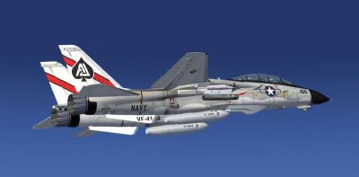 US Navy F-14D Tomcat in flight.