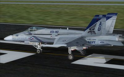 US Navy F/A-18C Pukin' Dogs CAG on runway.