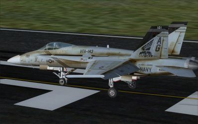 US Navy F/A-18C Pukin' Dogs on runway.
