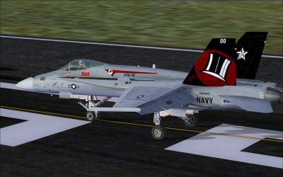 US Navy F/A-18C Top Hatters CAG on runway.