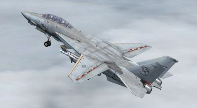 Grumman F-14D Tomcat in flight.