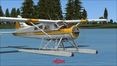 (After) Default DeHavilland Beaver DHC2.